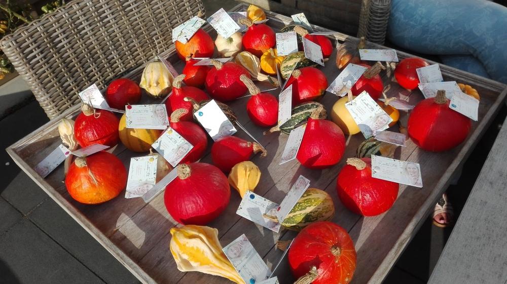 voedingsadvies massage zwolle 2017-09-29 16 55 33